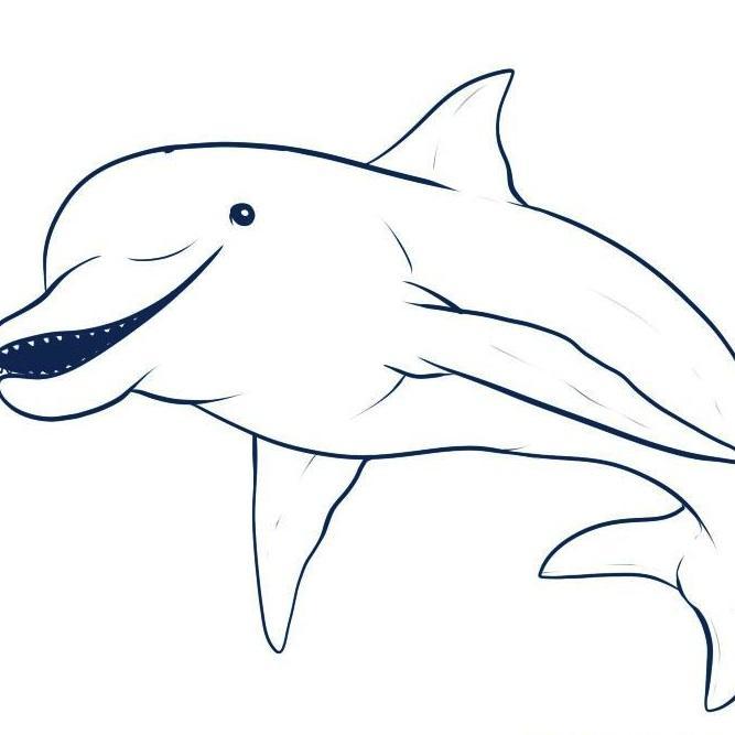 Delfin rosado para dibujar - Imagui